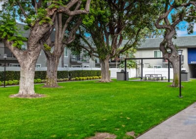 Beachwood Apartments greeny public yard